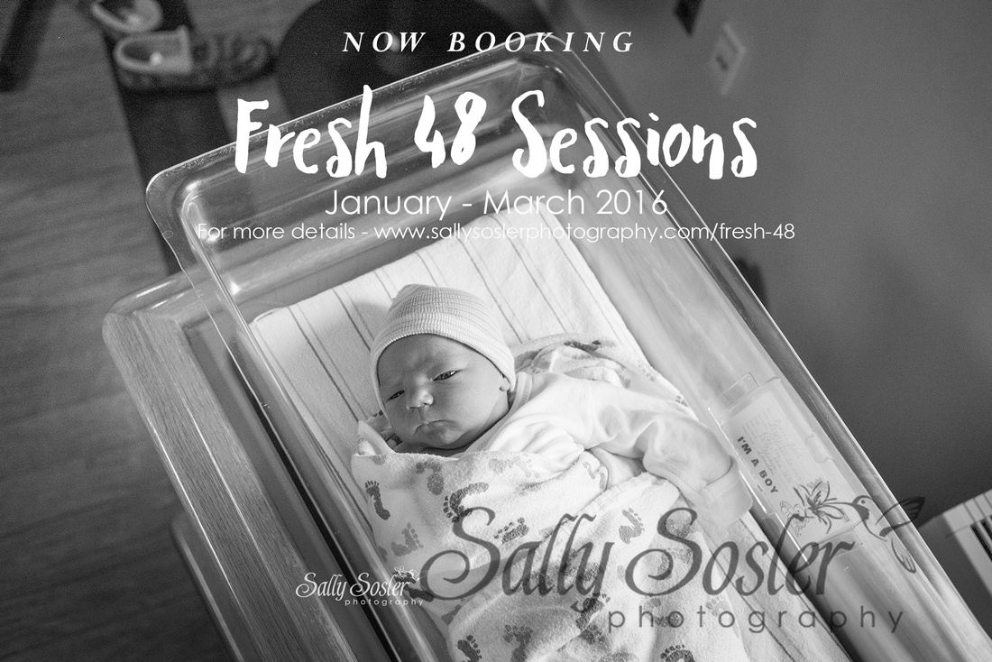 Orange County NY Newborn Photographer